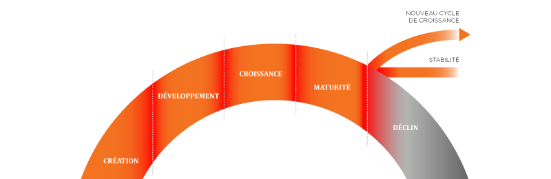 Un leadership adapté au cycle de vie de votre organisation
